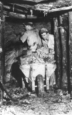 South Devon ball clay mine 1950's