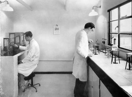Pike Fayle laboartories in Dorset, 1950s