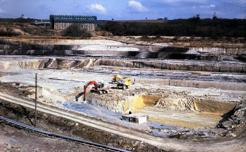 Westbeare Quarry 1980